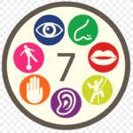 The Seven Senses